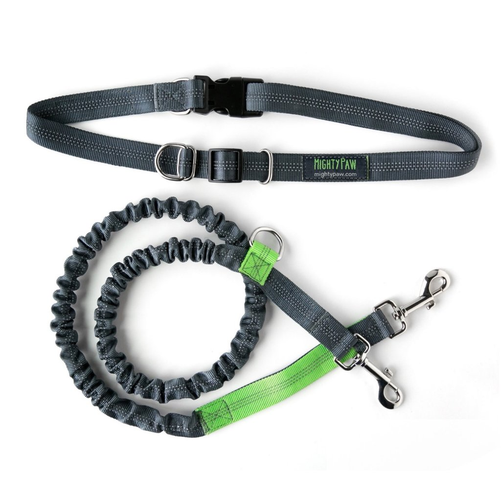 Mighty Paw Hands Free Bungee Leash Set